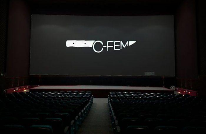 PALMARES CFEM 2017